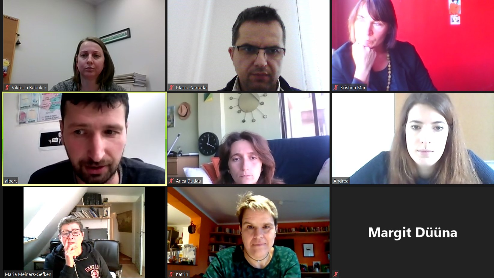 NEWS online meeting